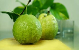amrud,guava