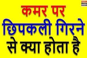 Kamar Par Chipkali Girna ! कमर पर छिपकली गिरना