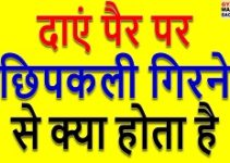 Daye Pair Par Chipkali Girna, daye pair par chipkali girne ka matlab, दाएं पैर पर छिपकली का गिरना, दाएं पैर पर छिपकली गिरना, दाएं पैर पर छिपकली गिरने का मतलब, दाएं पैर पर छिपकली गिरने से क्या होता है