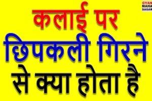 baye kalai par chipkali girna, Kalai Par Chipkali Girna, left kalai par chipkali girna, कलाई पर छिपकली गिरना, छिपकली का कलाई पर गिरना, दाहिने हाथ की कलाई पर छिपकली गिरना, बाएं हाथ की कलाई पर छिपकली गिरना